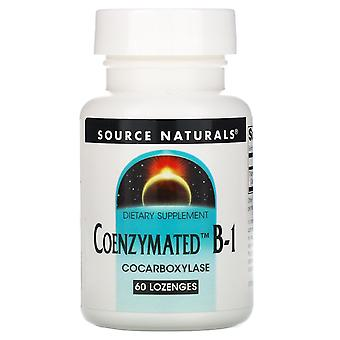 Fuente Naturales, Coenzimáticas B-1, 60 Pastillas
