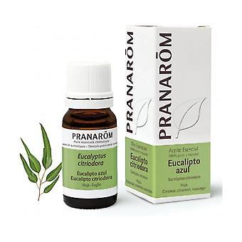 Lemon Eucalyptus essential oil - leaf 10 ml of essential oil