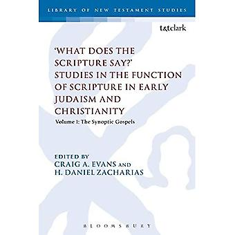 'What Does the Scripture Say?' Studies in the Function of Scripture in Early Judaism and Christianity: Volume 1: The Synoptic Gospels - Library of New Testament Studies