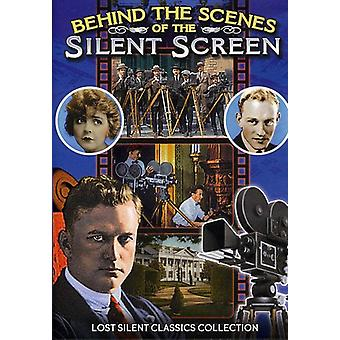 Behind the Scenes of the Silent Screen [DVD] USA import
