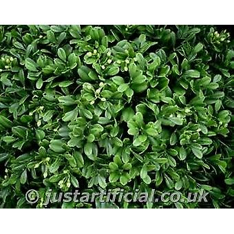 Artificial Topiary Boxwood Hedging Panels