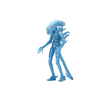Alien Warrior Kenner tributo Poseable Figure de Alien