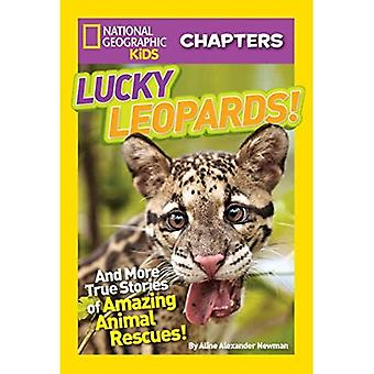 Lucky Leopards!: And More True Stories of Amazing Animal Rescues (National Geographic Kids Chapters)