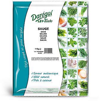 Daregal Frozen Sage