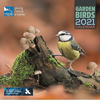 RSPB British Garden Birds Square Wall Calendar 2021