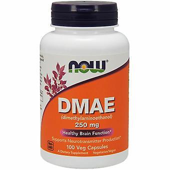 الآن DMAE الأطعمة، 250 ملغ، 100 Vcaps