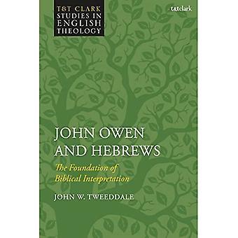 John Owen och hebreerbrevet: Grunden för biblisk tolkning (T & T Clark studier i engelsk teologi)