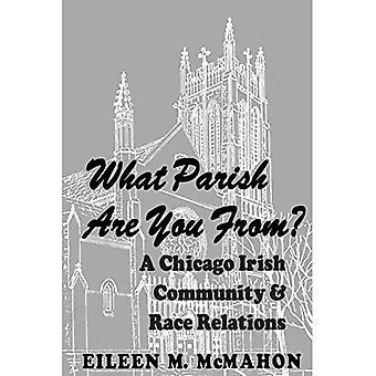 De quelle paroisse êtes-vous originaire ? : Une communauté irlandaise de Chicago et des relations raciales