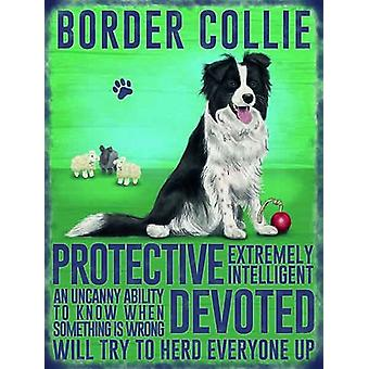 Medium Wall Plaque 200mm x 150mm - Border Collie by The Original Metal Sign Co