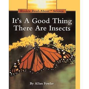 Sua una buona cosa ci sono insetti