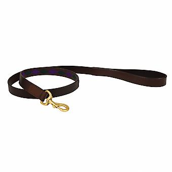 Weatherbeeta Polo Leather Dog Lead - Beaufort Brown/purple/teal