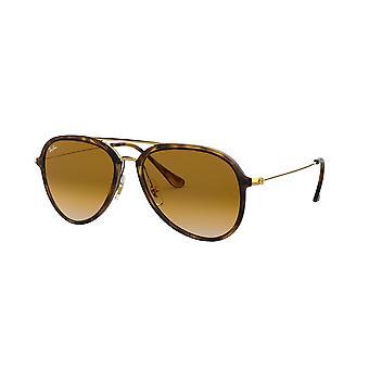 Ray-Ban RB4298 710/51 Light Havana/bruin kleurovergang zonnebril