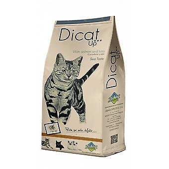 ダイカトアップ海の味(猫、食べ物、私は思う)