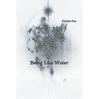 Being Like Water by Fox & Charlie