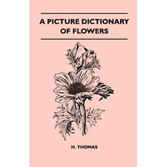 A Picture Dictionary of Flowers by Thomas & H. H.