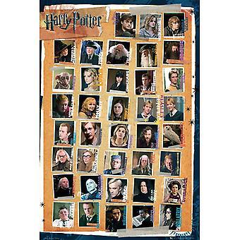 Pôster de Harry Potter 7 Personagens Maxi