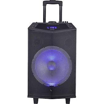 Denver TSP-404L hordozható PA hangszóró 30,5 cm 12 hüvelykes 40 W 1 db