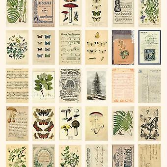 30pcs/ doos Oude Bos Dieren Planten Specimen Ansichtkaart Wenskaarten