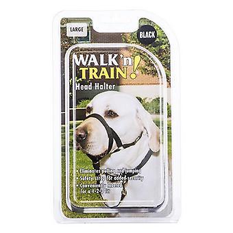 "Coastal Pet Walk'n Train Head Halter - Size 3 (15""-20"" Neck & 7""-9"" Snout Circumference)"