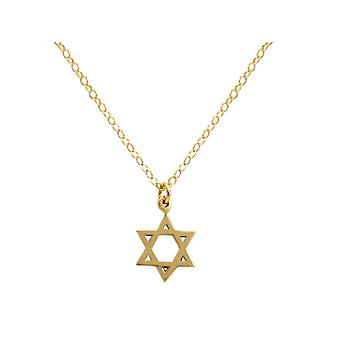 Gemshine necklace Star of David, Star of David 925 silver, gold plated, rose 13 mm