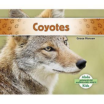 Coyotes (Coyotes) by Grace Hansen - 9781624026669 Book