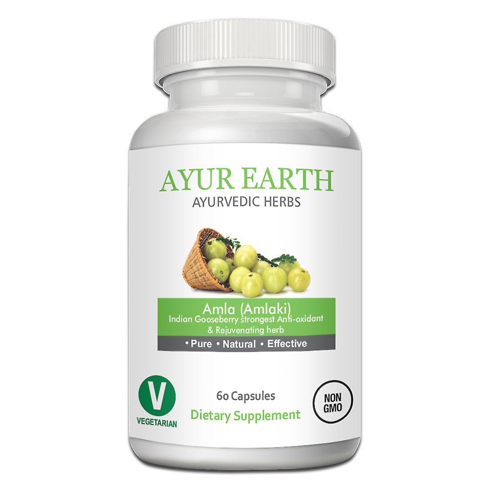 AYUR EARTH Amla Indian Gooseberry Anti-oxidant and Rejuvenating Herb