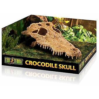 Exo Terra Exo Terra Crocodile Skull (Reptiles , Decoration , Caves & Rocks)