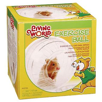Living World Medium Exercise Ball (Small pets , Toys)