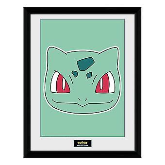 Pokémon, Tavla - Bulbasaur Face
