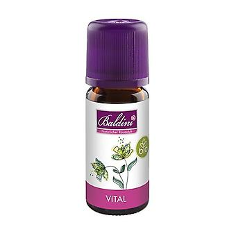 Vital Essential Oil Blend 10 ml of essential oil