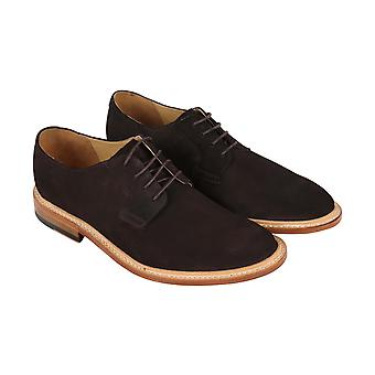 Bostonian Adult Mens No.16 Soft Low Plain Toe Oxfords & Lace Ups