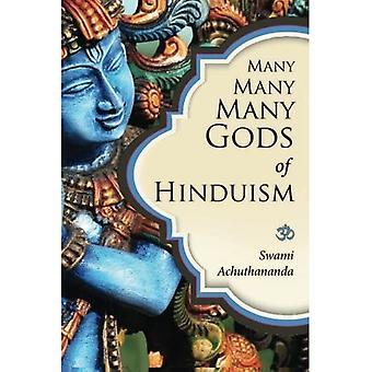 Mange mange guder hinduismen: Turning troende i ikke-troende og ikke-troende i troende