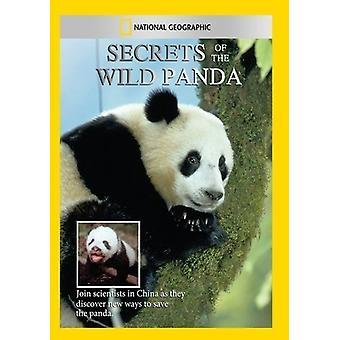 Secrets of the Wild Panda [DVD] USA import