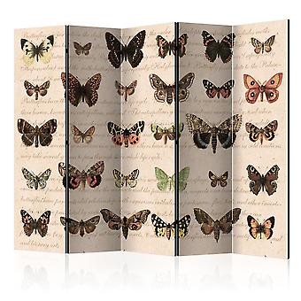 Vouwscherm - Retro Style: Butterflies II [Room Dividers]