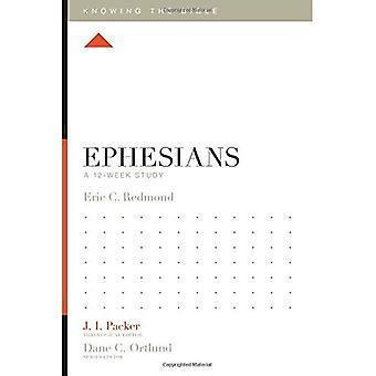 Efeserne: En 12-ukers studie (vite Bibelen)