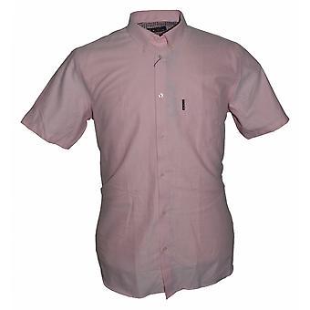 BEN SHERMAN Ben Sherman Oxford Short Sleeve Button Down Shirt