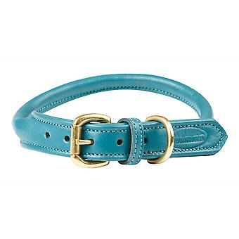 Weatherbeeta gerold lederen Dog Collar-Teal