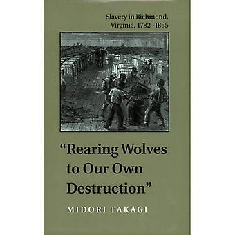 Rearing Wolves to Our Own Destruction: Slavery in Richmond, Virginia, 1782-1865