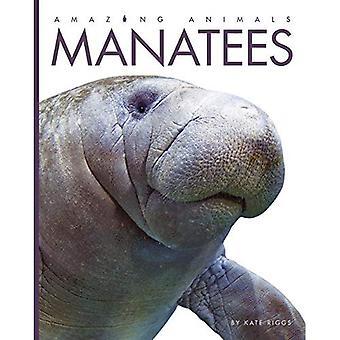 Manater (fantastiska djur)