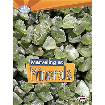 Marveling at Minerals by Sally M Walker - 9781467707923 Book