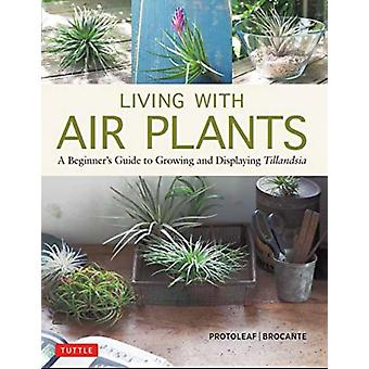 Living with Air Plants by Yoshiharu Kashima Protoleaf