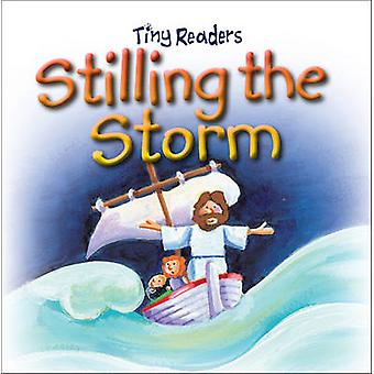 Stilling The Storm by Juliet David & Illustrated by Hannah Wood