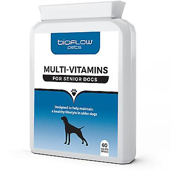 Bioflow - Multi-Vitamin Supplement For Senior Dogs
