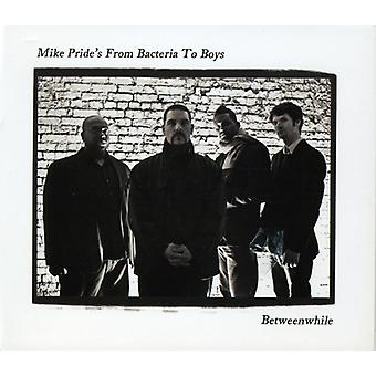 Mike Pride's From Bacteria to Boys - Betweenwhile [CD] USA import
