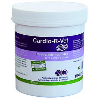 Stanvet G.A.CARDIO R VET 250GR (dust) (Dogs , Cats , Supplements , Supplements)