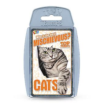 Cats RB Top Trumps Card Game
