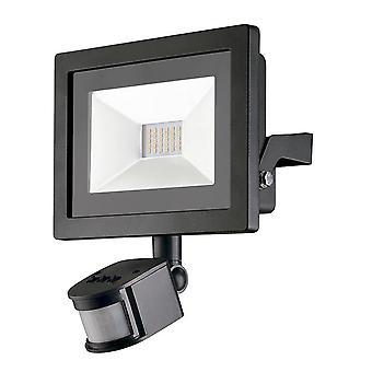 Forlight-előzetes érzékelő LED kültéri fényjelző PX-0116-NEG