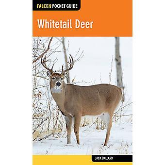 Whitetail Deer by Jack Ballard - 9781493026456 Book