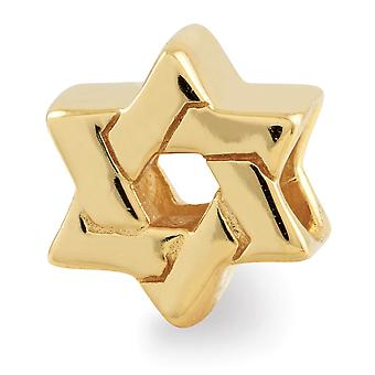 925 Sterling Silver Polished 14k Gold Plated Reflections Religious Judaica Star of David Bead Charm Pendant Necklace Jew