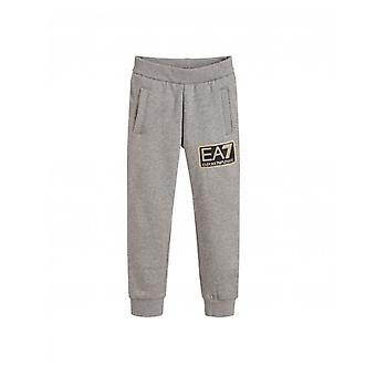 Ea7 synlighed logo joggers